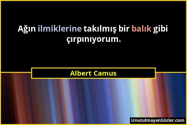 Albert Camus - Ağın ilmiklerine takılmış bir balık gibi çırpınıyorum....