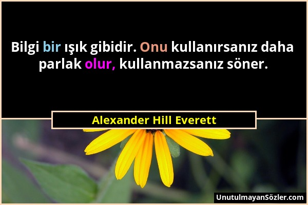Alexander Hill Everett - Bilgi bir ışık gibidir. Onu kullanırsanız daha parlak olur, kullanmazsanız söner....