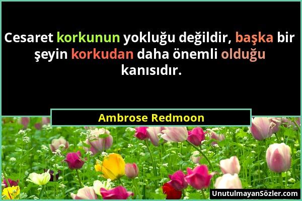Ambrose Redmoon - Cesaret korkunun yokluğu değildir, başka bir şeyin korkudan daha önemli olduğu kanısıdır....