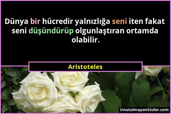 Aristoteles - Dünya bir hücredir yalnızlığa seni iten fakat seni düşündürüp olgunlaştıran ortamda olabilir....