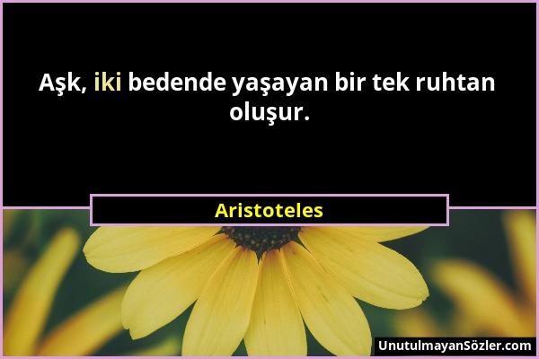 Aristoteles - Aşk, iki bedende yaşayan bir tek ruhtan oluşur....