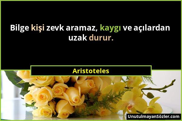 Aristoteles - Bilge kişi zevk aramaz, kaygı ve açılardan uzak durur....