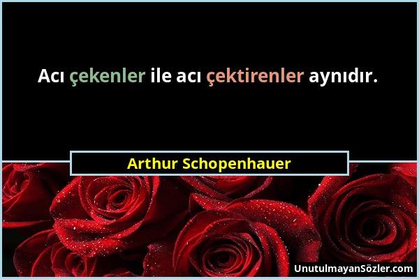 Arthur Schopenhauer - Acı çekenler ile acı çektirenler aynıdır....