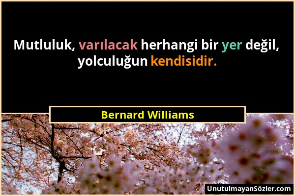 Bernard Williams Sözü 1