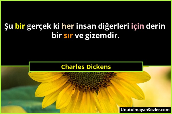 Charles Dickens - Şu bir gerçek ki her insan diğerleri için derin bir sır ve gizemdir....