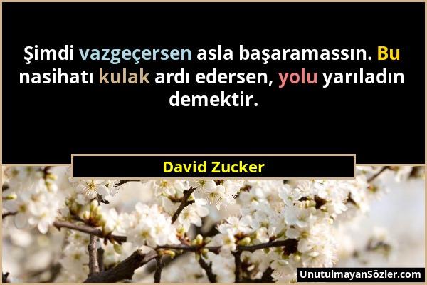David Zucker - Şimdi vazgeçersen asla başaramassın. Bu nasihatı kulak ardı edersen, yolu yarıladın demektir....