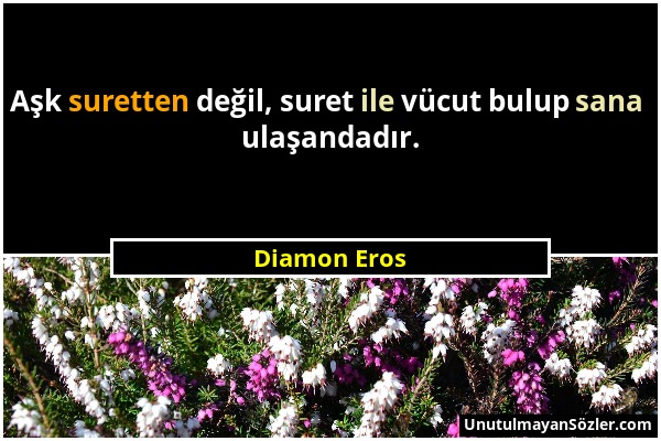 Diamon Eros - Aşk suretten değil, suret ile vücut bulup sana ulaşandadır....