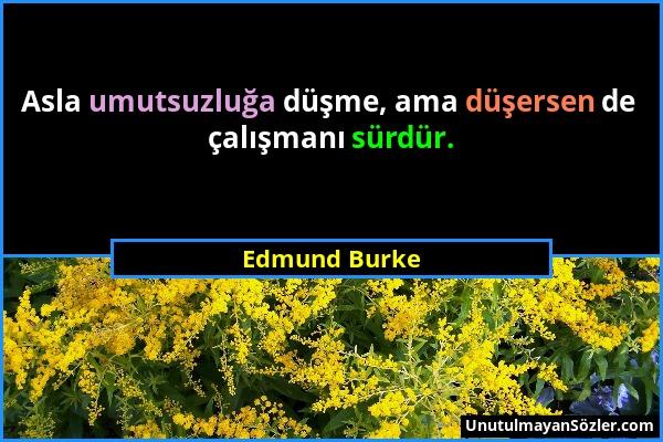 Edmund Burke - Asla umutsuzluğa düşme, ama düşersen de çalışmanı sürdür....