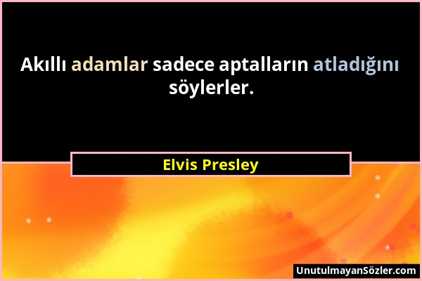 Elvis Presley - Akıllı adamlar sadece aptalların atladığını söylerler....