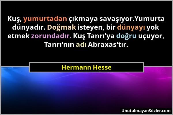 Hermann Hesse Sözü 46