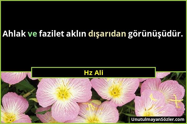 Hz Ali - Ahlak ve fazilet aklın dışarıdan görünüşüdür....