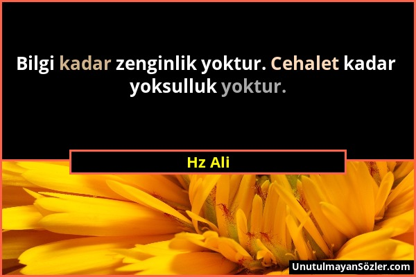 Hz Ali - Bilgi kadar zenginlik yoktur. Cehalet kadar yoksulluk yoktur....