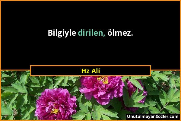 Hz Ali - Bilgiyle dirilen, ölmez....