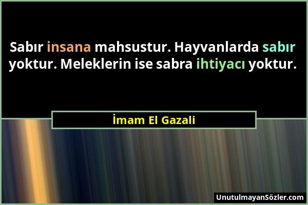 İmam El Gazali - Sabır insana mahsustur. Hayvanlarda sabır yoktur. Meleklerin ise sabra ihtiyacı yoktur....