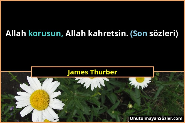 James Thurber - Allah korusun, Allah kahretsin. (Son sözleri)...