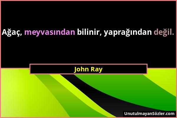 John Ray - Ağaç, meyvasından bilinir, yaprağından değil....