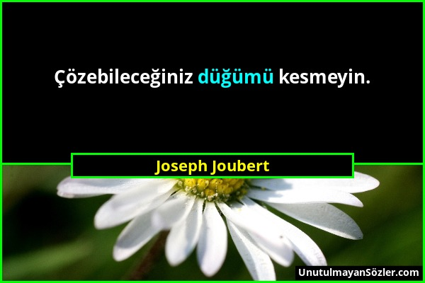 Joseph Joubert - Çözebileceğiniz düğümü kesmeyin....