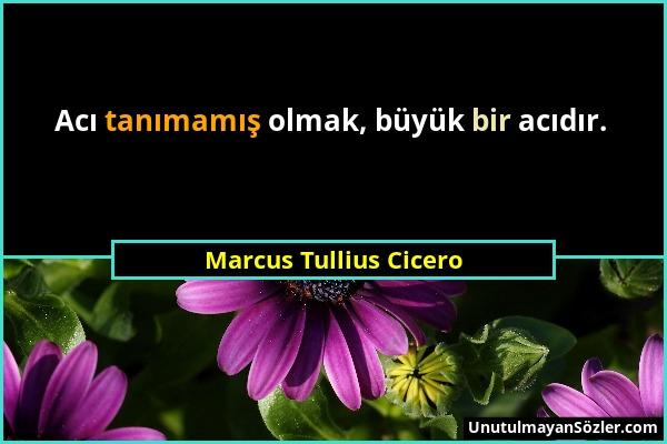 Marcus Tullius Cicero - Acı tanımamış olmak, büyük bir acıdır....