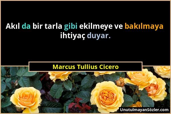 Marcus Tullius Cicero - Akıl da bir tarla gibi ekilmeye ve bakılmaya ihtiyaç duyar....