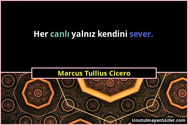 Marcus Tullius Cicero - Her canlı yalnız kendini sever....