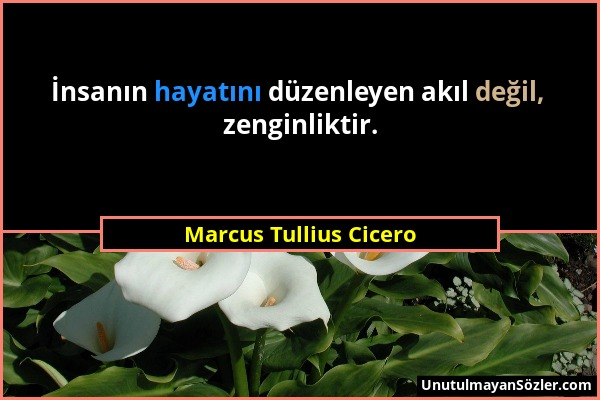 Marcus Tullius Cicero - İnsanın hayatını düzenleyen akıl değil, zenginliktir....