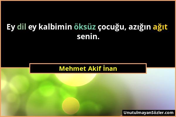 Mehmet Akif İnan - Ey dil ey kalbimin öksüz çocuğu, azığın ağıt senin....