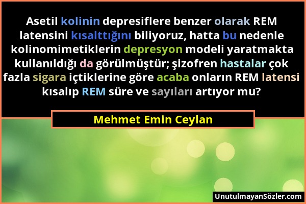 Mehmet Emin Ceylan Sözü 1