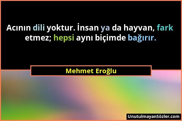 Mehmet Eroğlu - Acının dili yoktur. İnsan ya da hayvan, fark etmez; hepsi aynı biçimde bağırır....