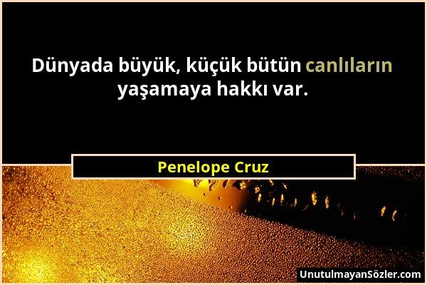 Penelope Cruz Sözü 1