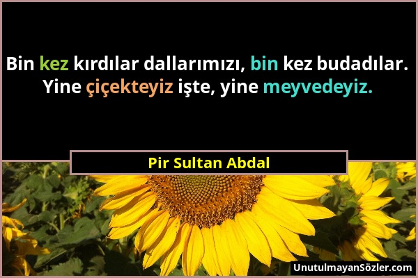pir sultan abdal sozler
