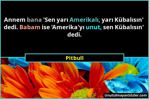 Pitbull - Annem bana 'Sen yarı Amerikalı, yarı Kübalısın' dedi. Babam ise 'Amerika'yı unut, sen Kübalısın' dedi....