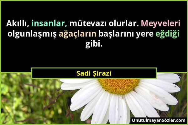 Sadi Şirazi Sözü 1