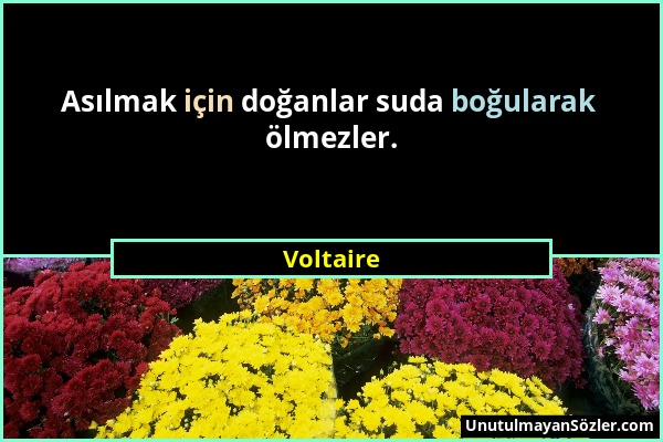Voltaire - Asılmak için doğanlar suda boğularak ölmezler....