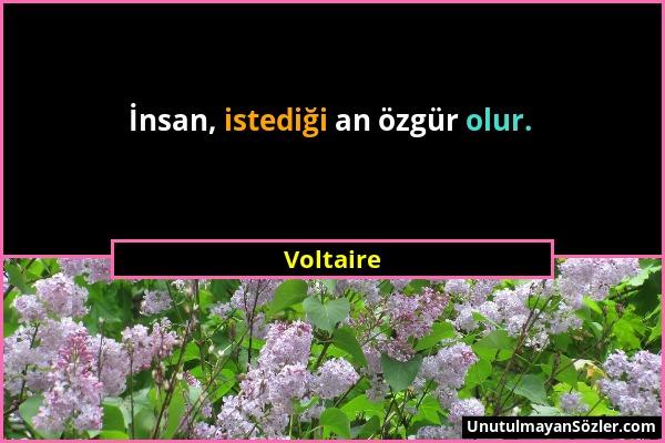 Voltaire - İnsan, istediği an özgür olur....