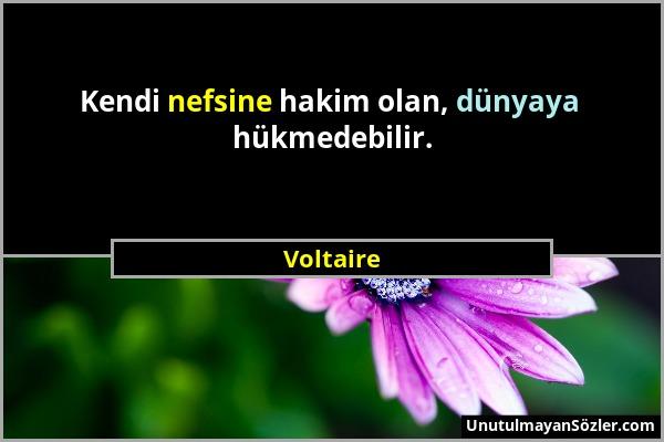 Voltaire - Kendi nefsine hakim olan, dünyaya hükmedebilir....