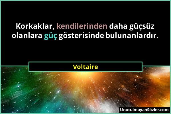 Voltaire Sözü 51