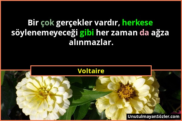 Voltaire - Bir çok gerçekler vardır, herkese söylenemeyeceği gibi her zaman da ağza alınmazlar....