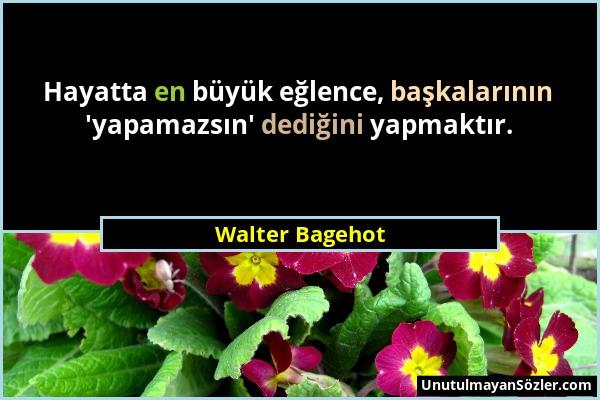 Walter Bagehot - Hayatta en büyük eğlence, başkalarının 'yapamazsın' dediğini yapmaktır....