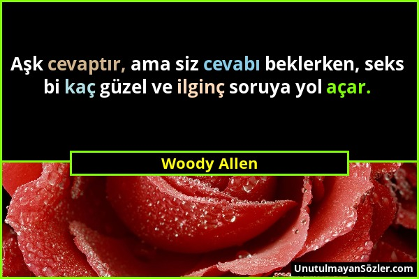 Woody Allen - Aşk cevaptır, ama siz cevabı beklerken, seks bi kaç güzel ve ilginç soruya yol açar....